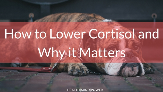 everything you need to know about cortisol